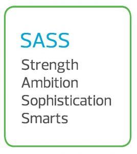 RSM SASS